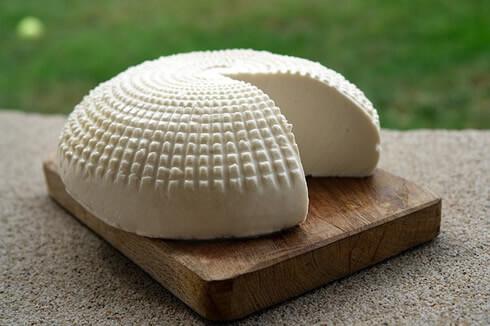 el queso y el porque no debes comerlo si tienes intolerancia lactosa