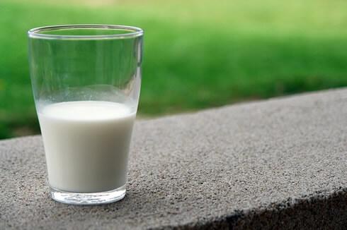 La leche y como hacer un tratamiento si padeces de intolerancia a la lactosa